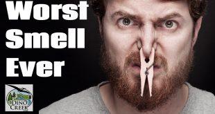 Worst Smells Ever