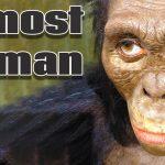 Archaic Humans | Pre-Human Ancestors