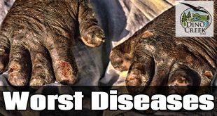 Worst Diseases